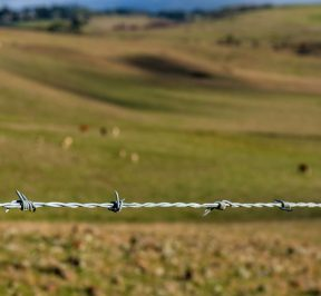 Great Southern Fencing