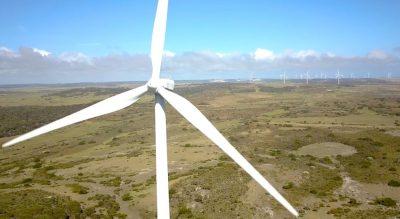 Tassie wind farm to trial grid stability services