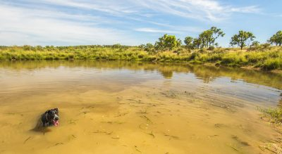 Water supply infrastructure rebates get farmers ready for 2018