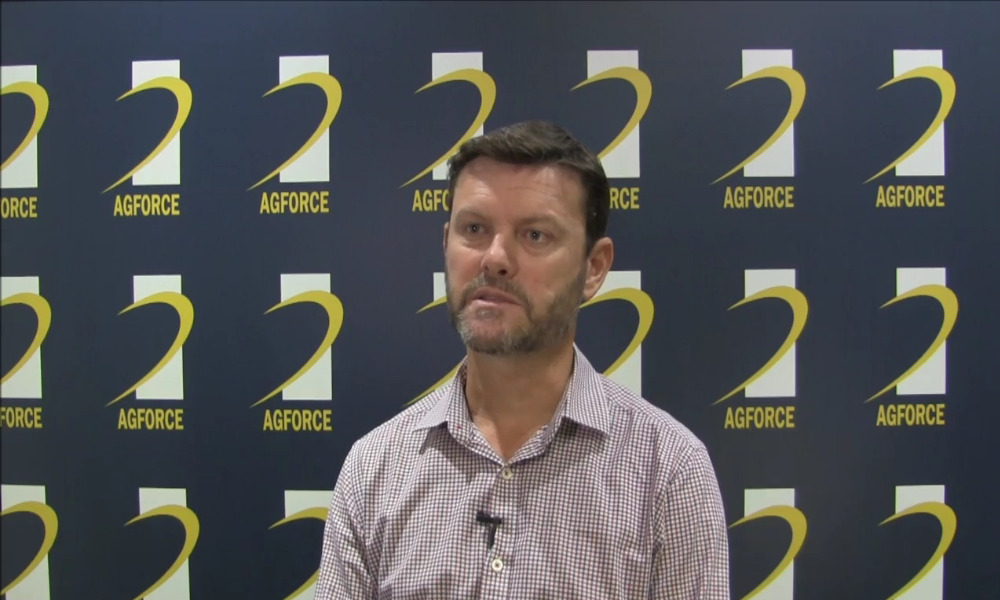AgForce Queensland Livestock Policy Officer Michale Allpass