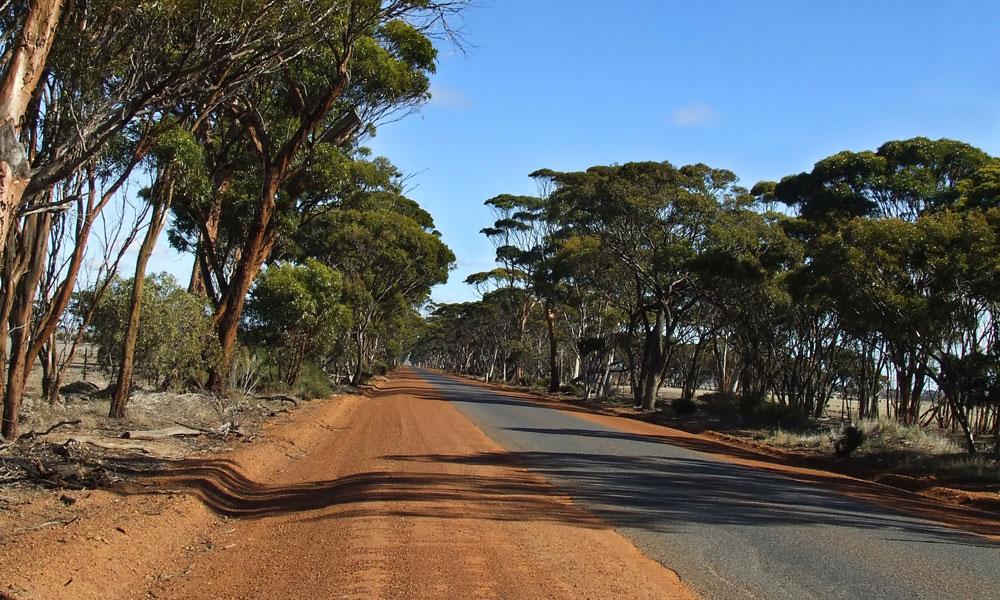 road rural stock image