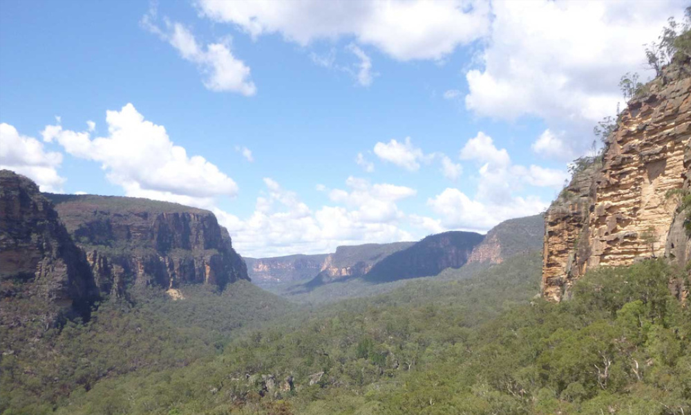Help protect Blue Mountains the fence