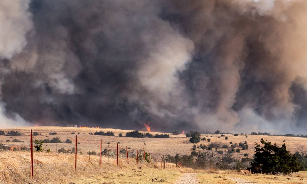 bushfire fence stock image