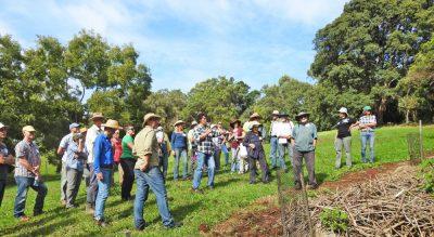 Free biodiversity field days prove popular with landholders