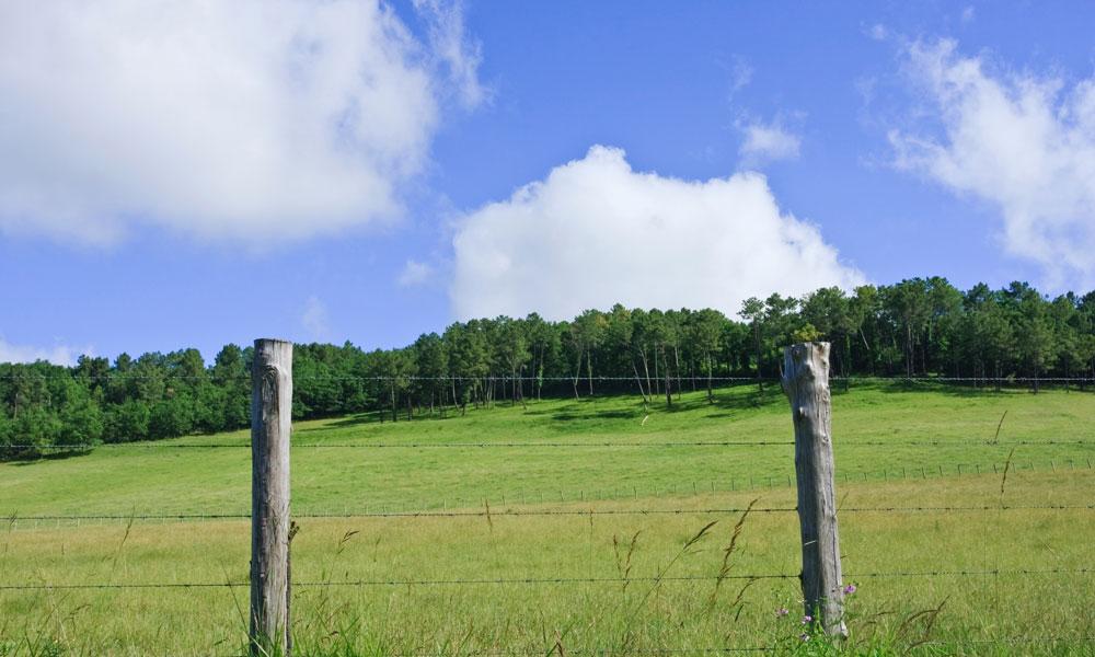 farm fence stock image
