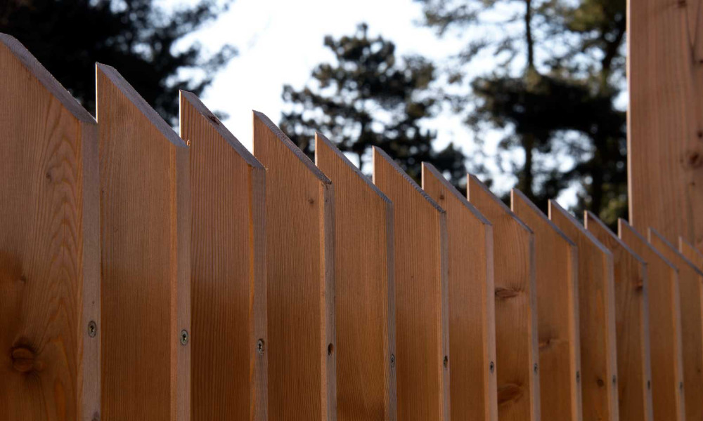 timber the fence may 2019