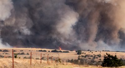 Bushfire assistance for northern NSW communities
