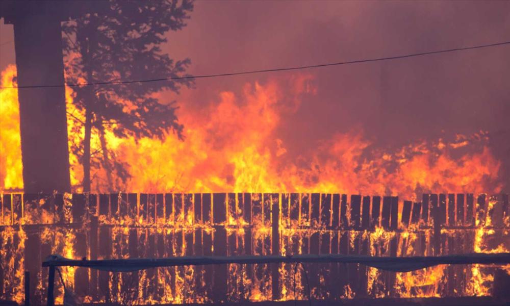 bushfire fence tf september 2019