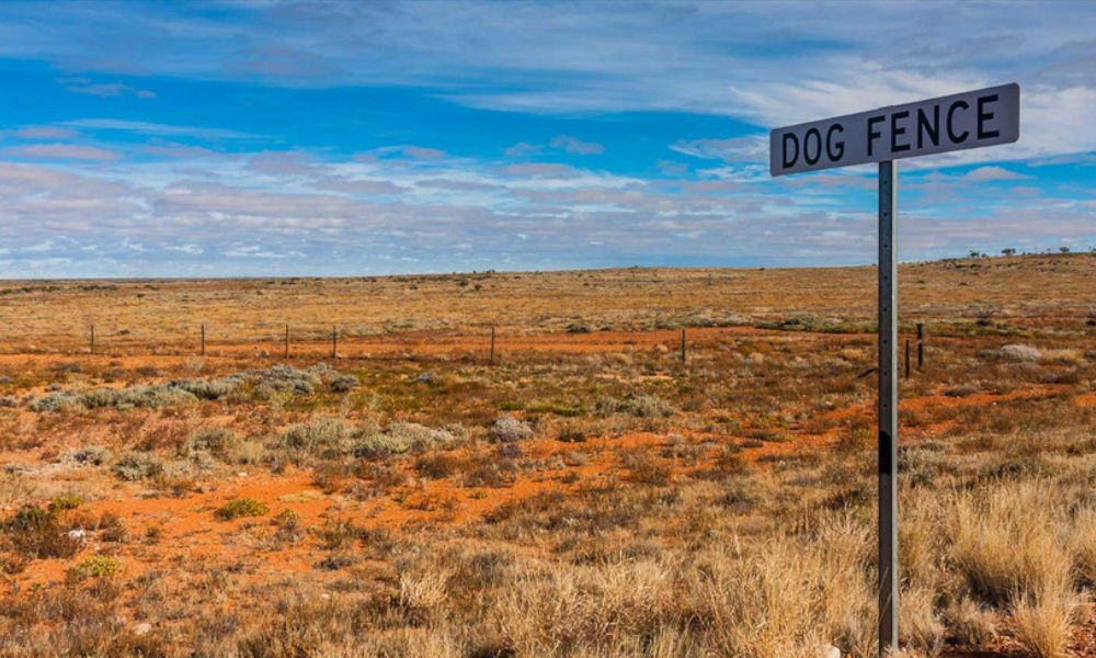 dog fence sa tf october 2019