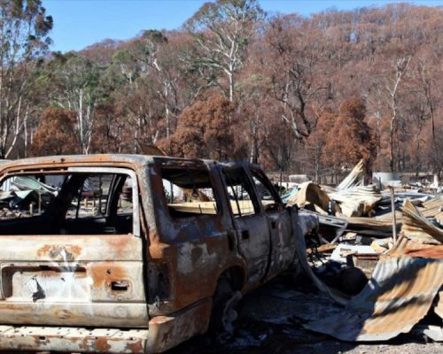 6 simple ways to prepare your property for bushfire season