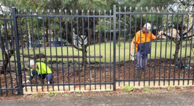 Simon Davis from North Coast Fencing NSW talks to The…