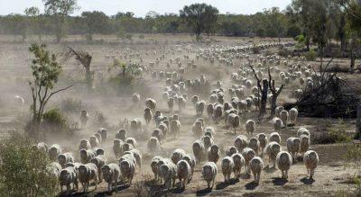 Opportunities & challenges in Aussie farming