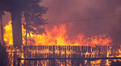 Red tape cut, access easier for bushfire affected small businesses