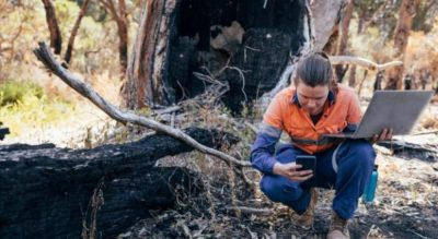 $140 million to boost critical industries damaged by bushfires
