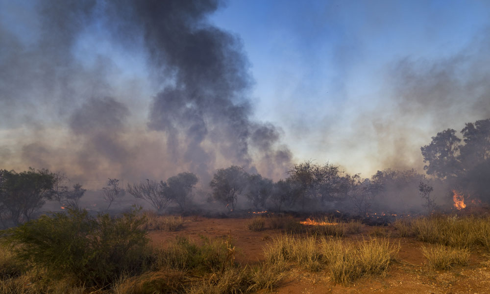 Annual Prescribed Burning Target Achieved Second